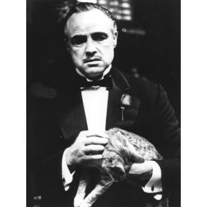 Photographie de Marlon Brando