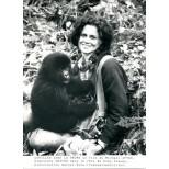 Sigourney Weaver dans Gorilles dans la brume - Dian Fossey