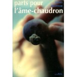 Denis Proteor - Parts pour l'âme-chaudron