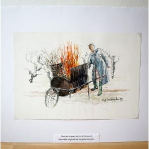 Aquarelle originale de Serge Benbouche - Dans les vignes de Cos d'Estournel